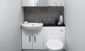 Дизайн маленького функционального туалета: фото отделок