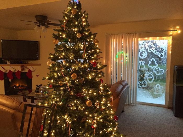 елка и украшенное стекло