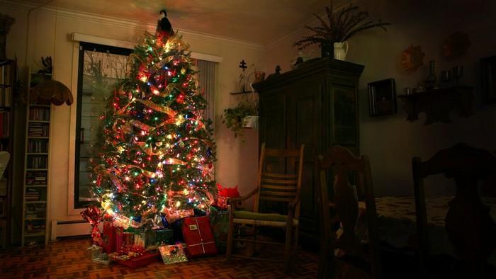 ярко выделяется елка в комнате