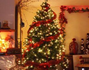 большая елка с красной лентой