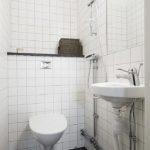 Небольшой туалет с душем