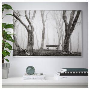 НОРРХАССЕЛ Постер, жизнь леса